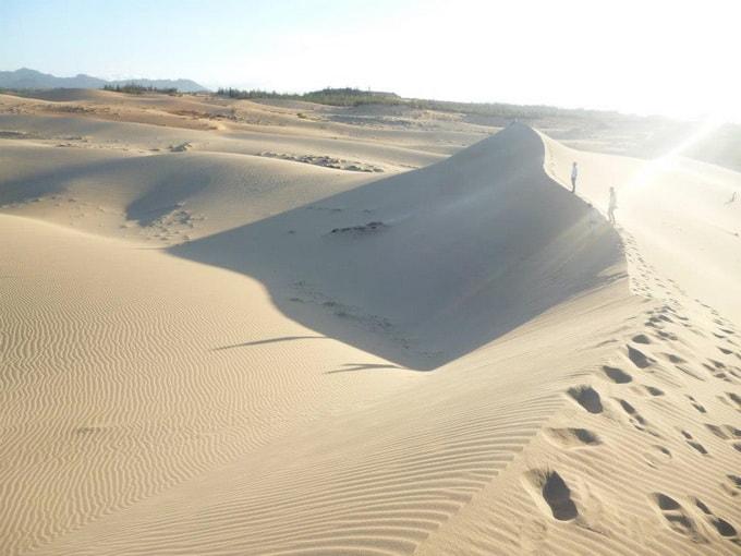 Cồn cát Quang Phú 04