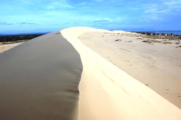 Cồn cát Quang Phú - cát trắng mịn màng