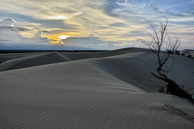 Cát có màu xám trắng - cồn cát Quang Phú