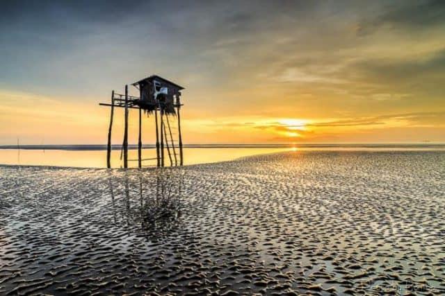 """""""..Đó là nơi mà người ta có thể ngắm cảnh biển Cần Giờ hiền hòa trong ánh nắng hè"""" (Ảnh sưu tầm)"""