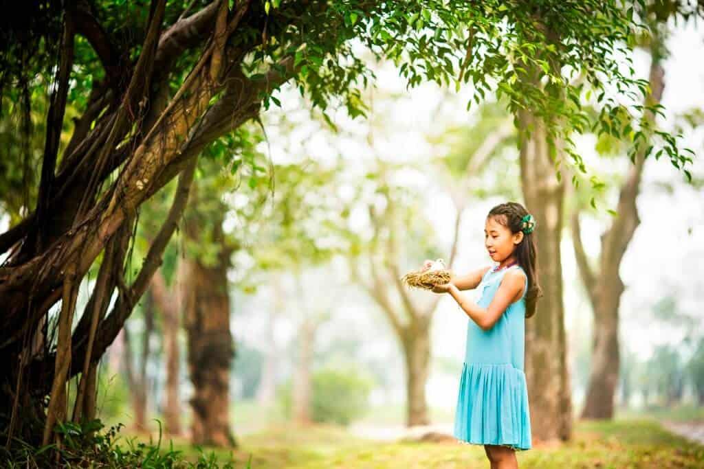 Công viên mùa thu địa điểm giải trí ở Ecopark
