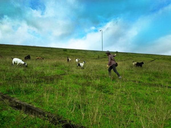 Ngọn đồi bao quanh ngôi làng tại Bến En