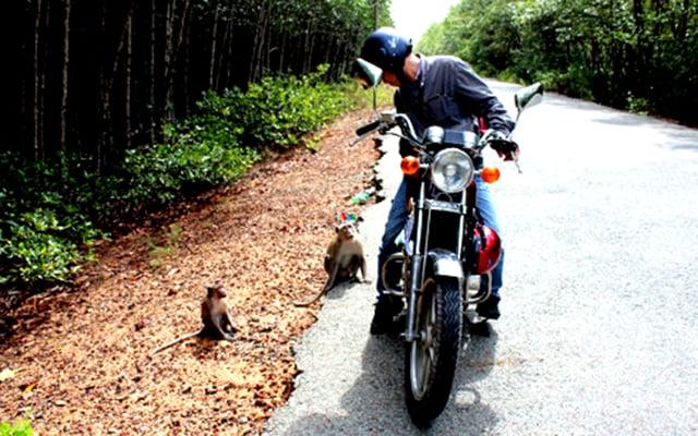 Đi xe máy đến đảo Khỉ (Ảnh: ST)