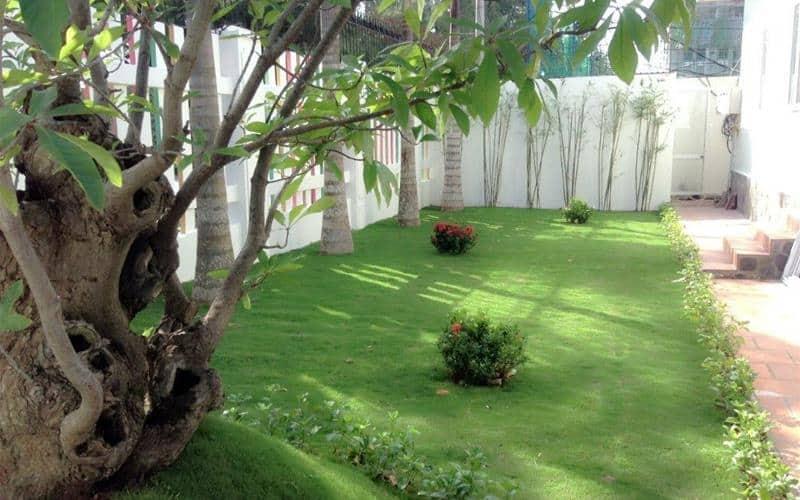 Sân vườn rộng rãi khách sạn (ảnh sưu tầm)