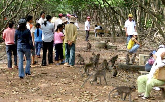 Thăm quan đảo Khỉ - Cần Giờ
