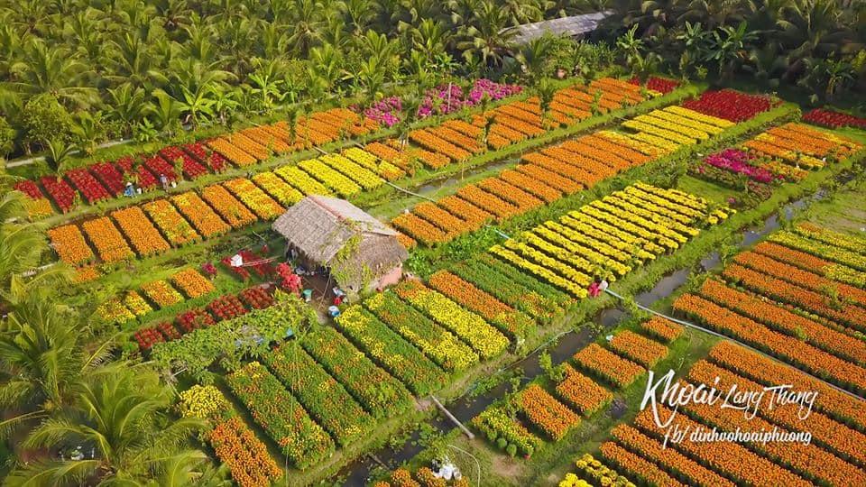 Làng hoa cảnh Chợ lách rực rỡ mỗi mùa xuân về. Ảnh: Youtuber Khoai Lang Thang