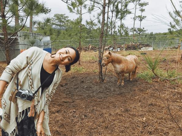 Checkin cùng ngựa lùn Poly tại Zoodoo Đà Lạt
