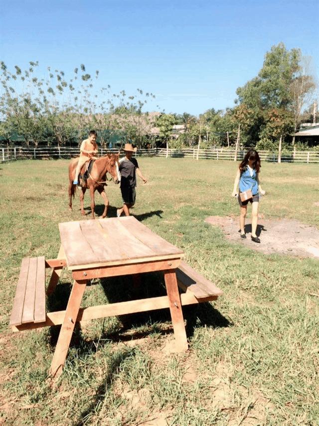 Tham gia cưỡi ngựa (Ảnh: Sưu tầm)