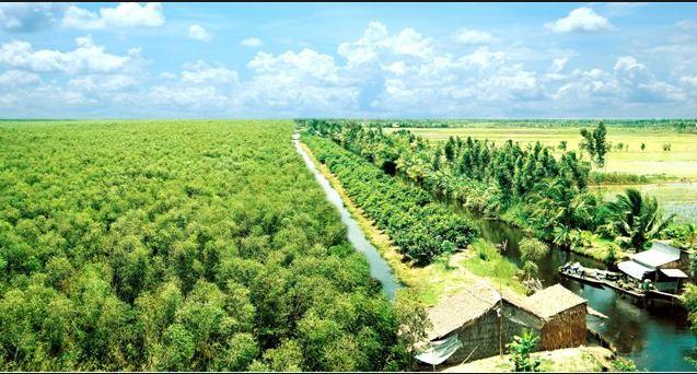 Khu du lịch sinh thái miền Tây U Minh Hạ
