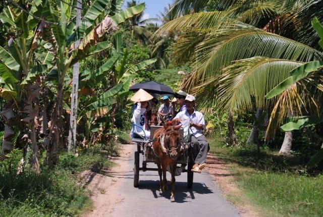 Du lịch Cồn Phụng bằng xe ngựa (Ảnh: Sưu tầm)