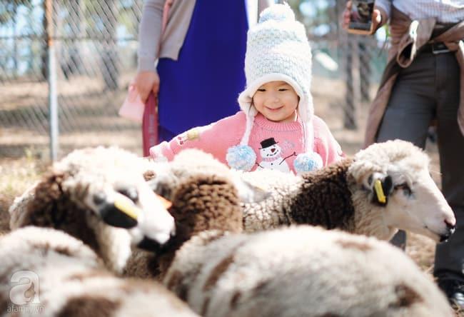 Lũ trẻ vui vui hết ý khi được đưa đến Zoodoo