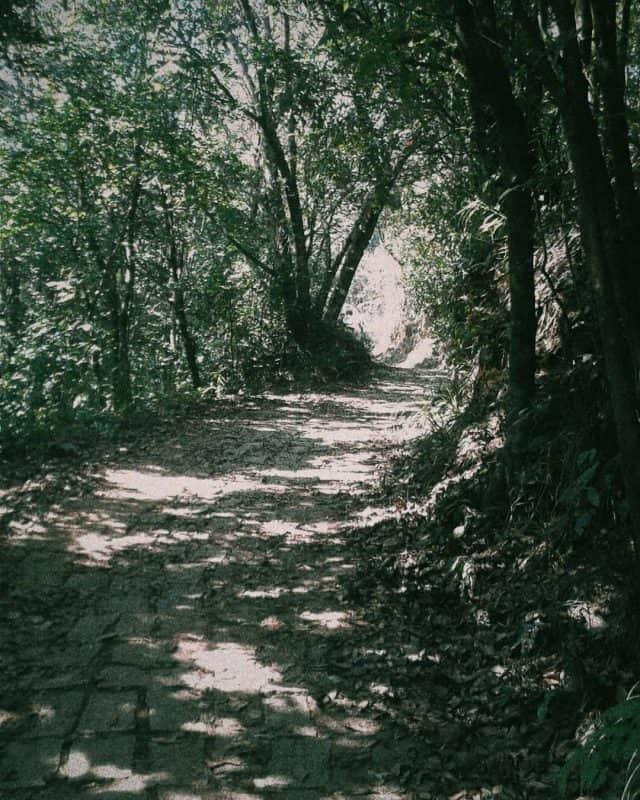 Con đường lên núi Bạch Mã