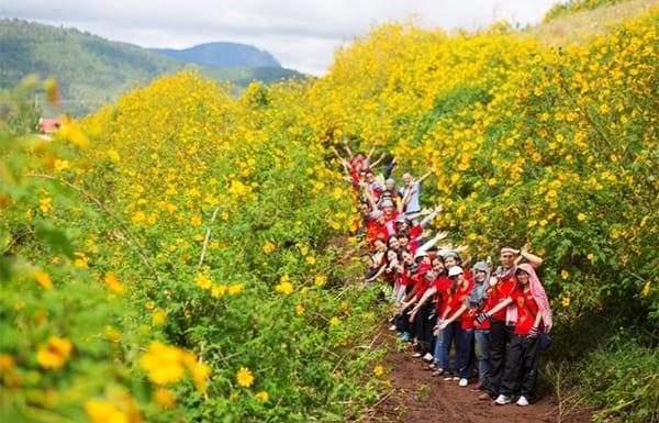 Cùng bạn bè trải nghiệm những cung đường vàng sắc hoa dã quỳ