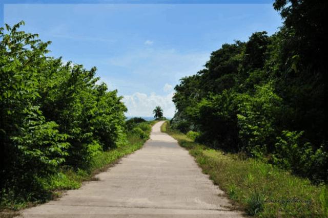 Con đường trên đảo Hải Tặc