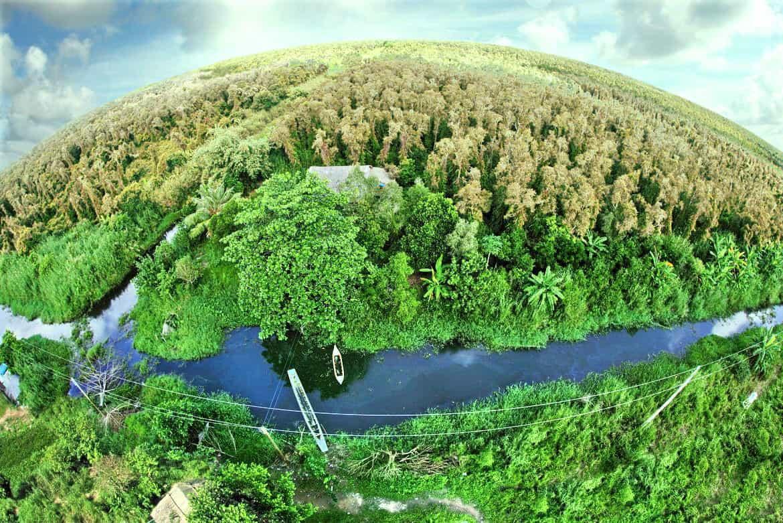 Khung cảnh rừng U Minh nhìn từ trên cao