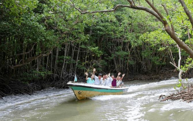 Tham quan rừng ngập mặn ở Cần Giờ (Ảnh ST)