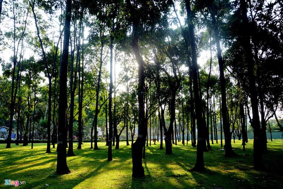 Khu vui chơi giải trí công viên Gia Định - Lá phổi xanh của Sài Gòn