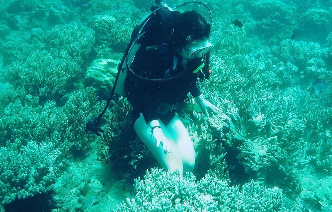 Đảo Hòn Mun có dịch vụ lặn biển ngắm san hô cực thú vị