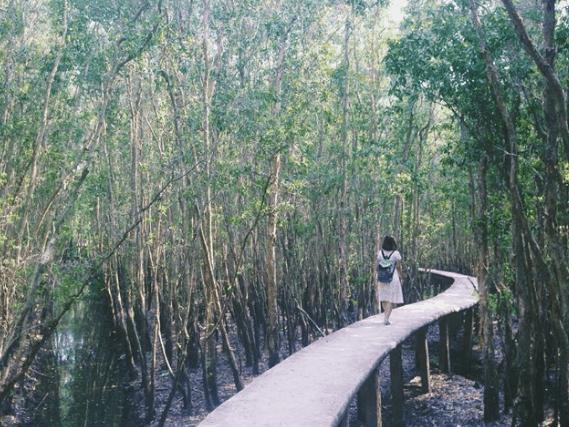 Con đường mòn trong làng nổi Tân Lập (Ảnh ST)