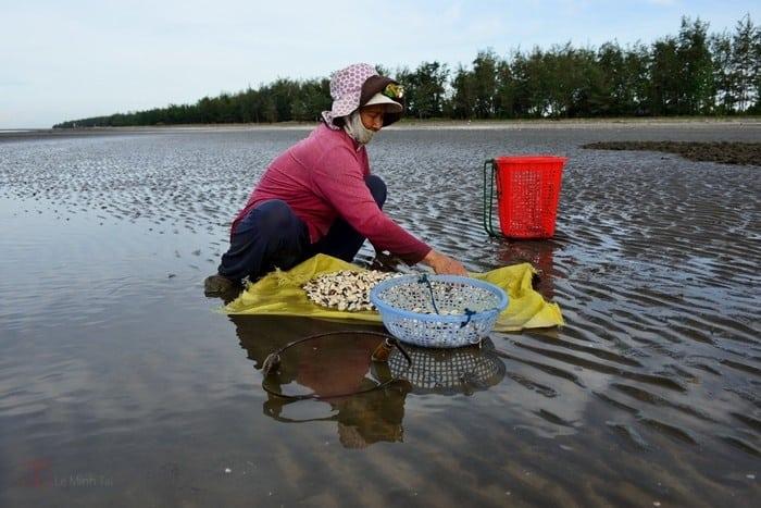 Hải sản tươi sống được người dân biển Cần Giờ thành phố Hồ Chí Minh bày bán ở chợ