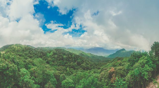 Thiên nhiên hùng vĩ của núi rừng Bạch Mã