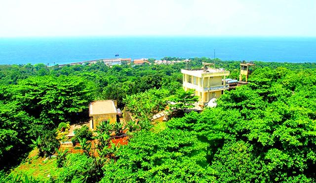 Rừng cây nhiệt đới tại đảo Cồn Cỏ