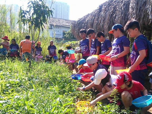 Nhân viên đang hướng dẫn các em cách làm nông