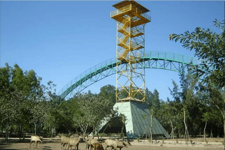 Tháp Tang Bồng ( ảnh sưu tầm)