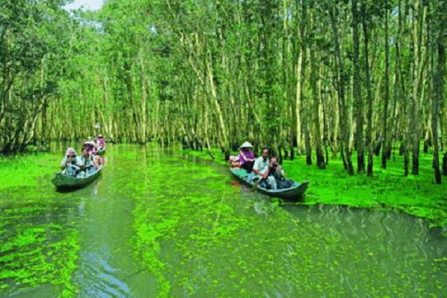 tiềm năng phát triển du lịch sinh thái cần giờ là rất lớn