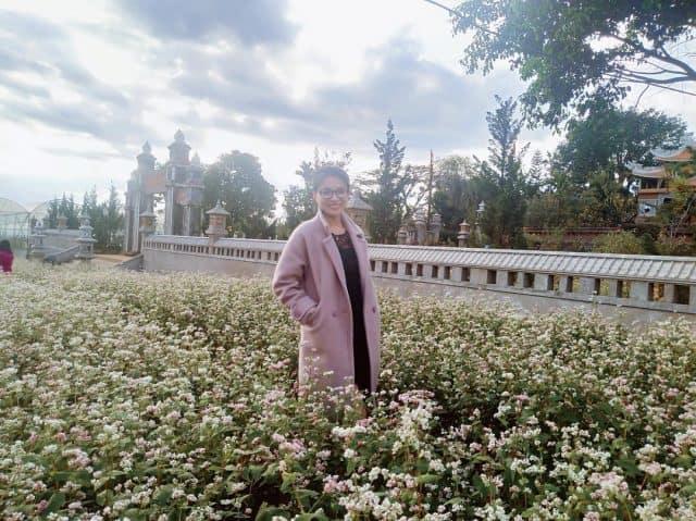 Hoa tam giác mạch Đà Lạt tại chùa Vạn Đức 01