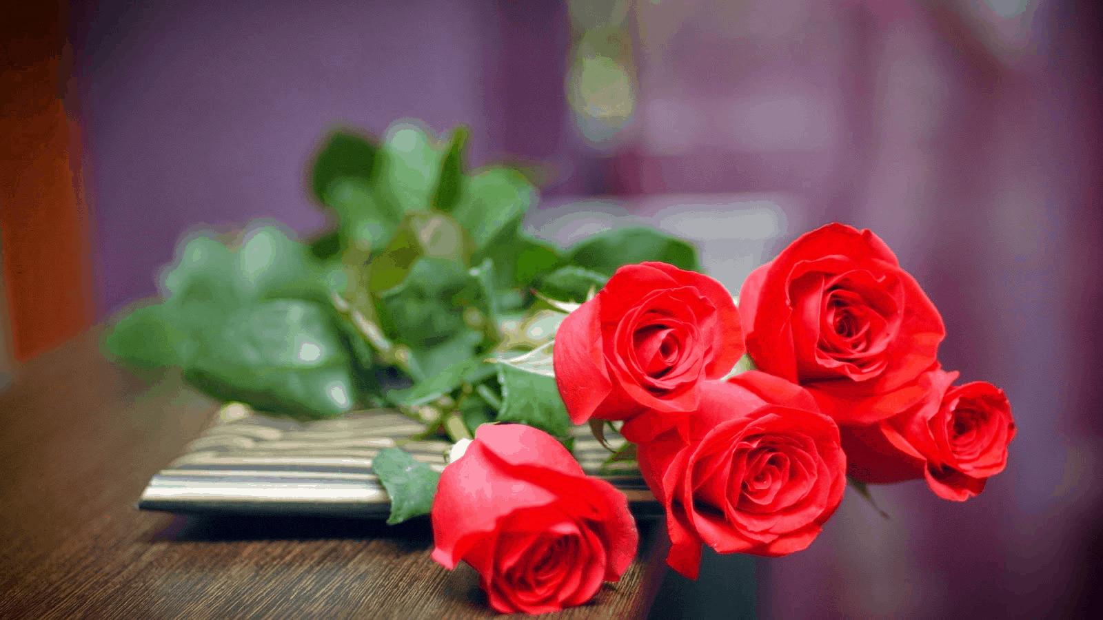 20 -10 nên tặng gì cho người yêu