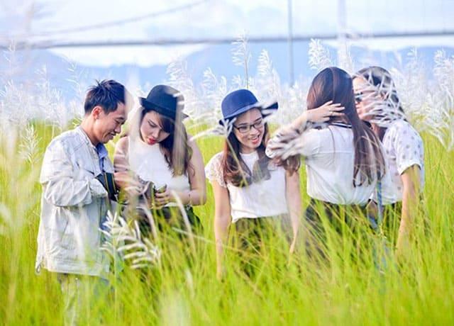 Cánh đồng cỏ lau trắng Đà Nẵng 04