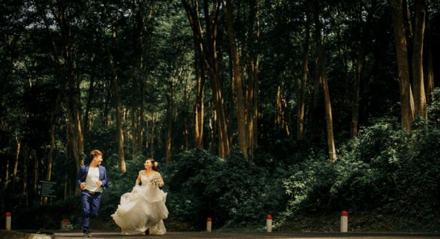Rừng Săng Lể - cũng là địa điểm chụp ảnh cưới 01