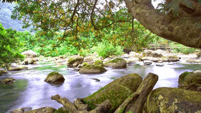 Suối Nước Moọc Quảng Bình 02