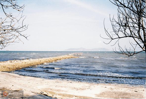 Khung cảnh biển Cần Giờ lãng mạn và thơ mộng