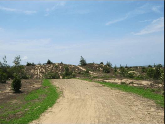 Đường đến bãi Đồi Nhái