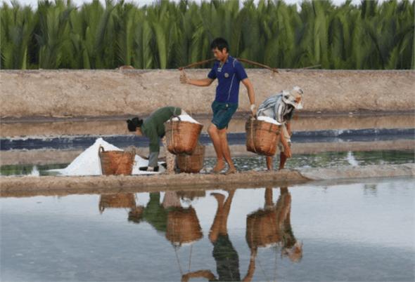 Chiêm ngưỡng vẻ đẹp của nghề làm muối tại đảo
