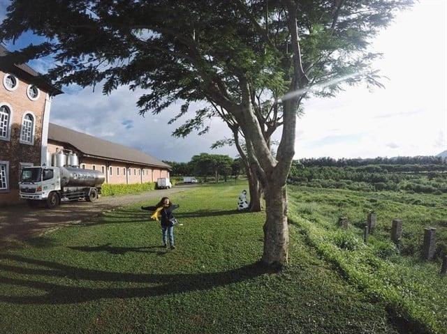 Địa điểm vui chơi Đà Lạt - Dalat Milk Farm 01