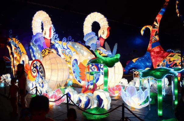 Đèn lồng đôi thiên nga khổng lồ được thiết kế các điệu