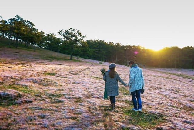 Địa điểm vui chơi Đà Lạt - Đồi cỏ hồng 01
