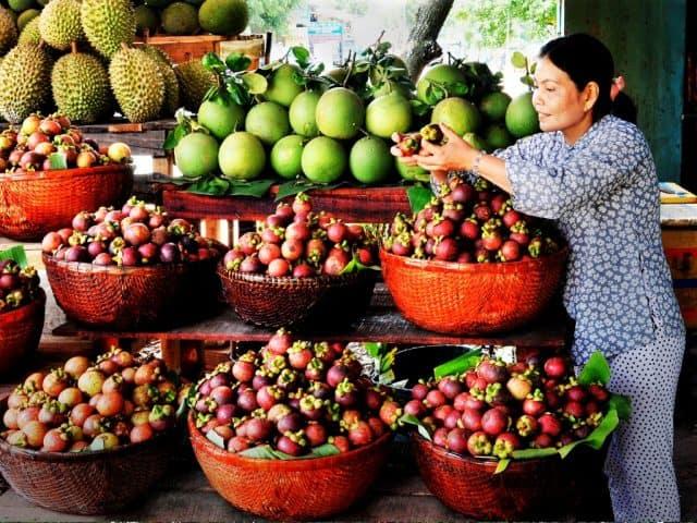 Có rất nhiều trái cây các loại tại miệt vườn Cái Mơn