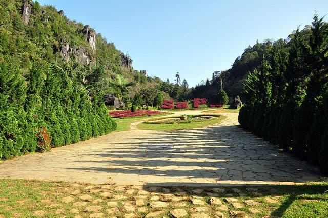 Vườn hoa ở núi Hàm Rồng
