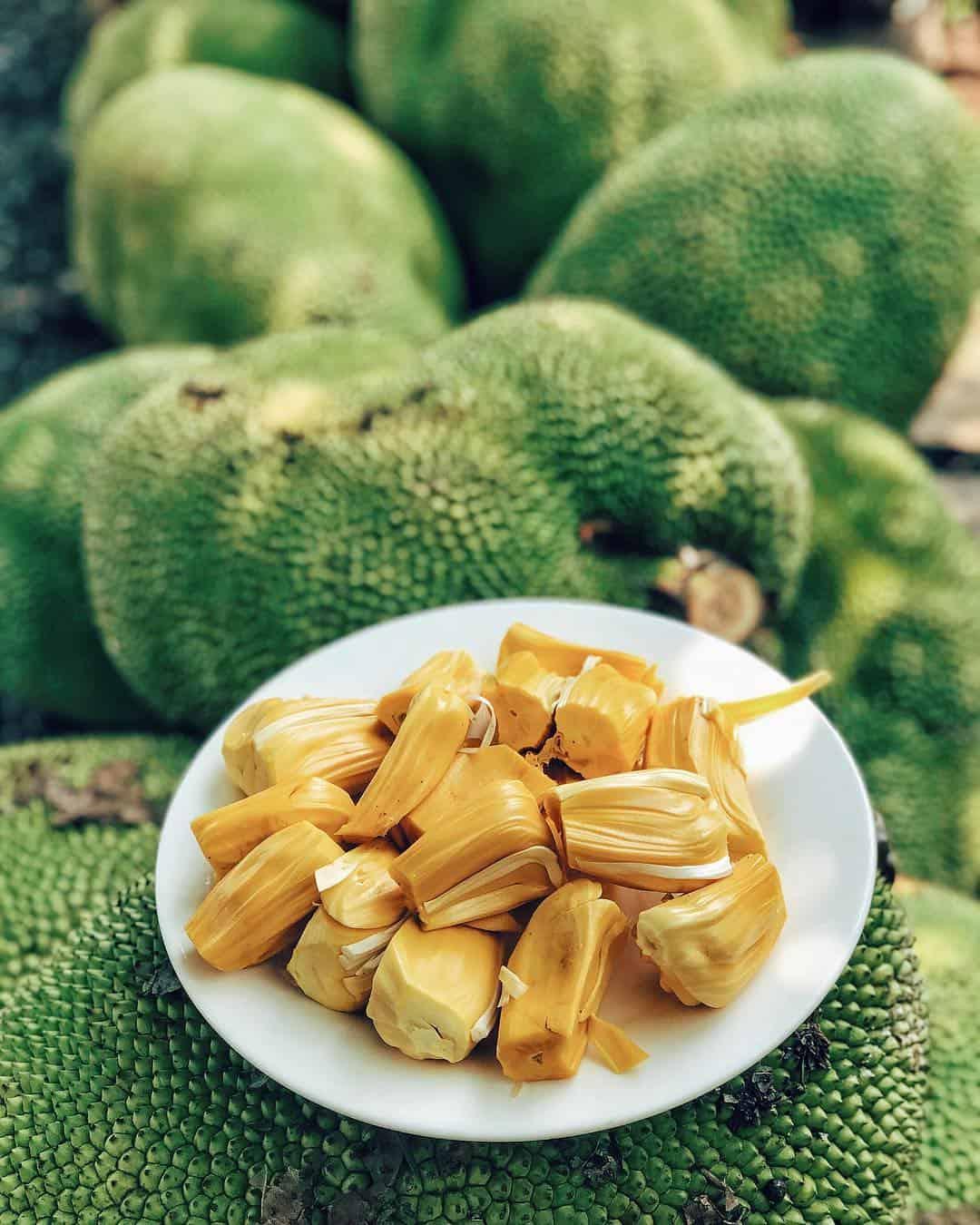 The yellow jackfruit is fragrant