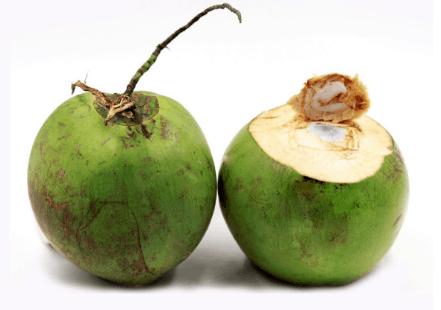 Dừa tươi (Ảnh ST)