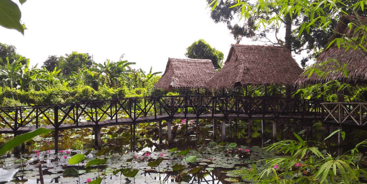 Vẻ đẹp của vườn sinh thái Lê Lộc (Ảnh ST)