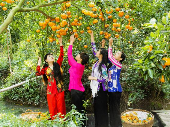 Trái cây ở Phong Điền - Cần Thơ (Ảnh ST)