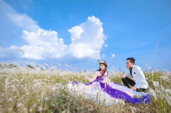 Beautiful wedding photos in the field of reeds