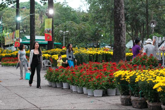 Công viên 23 tháng 9 ngập tràn sắc hoa