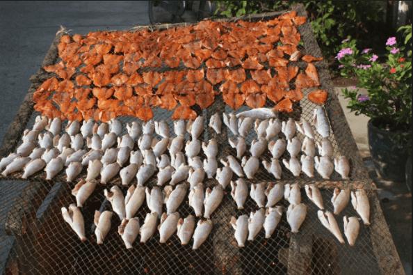 Cá phơi khô của người dân sống trên đảo