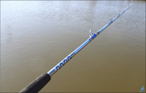 Loại cần dành cho câu cá biển